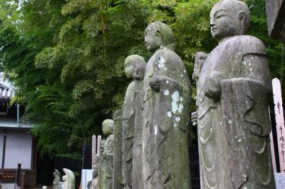 武蔵野の秋を歩く ~2009年10月~
