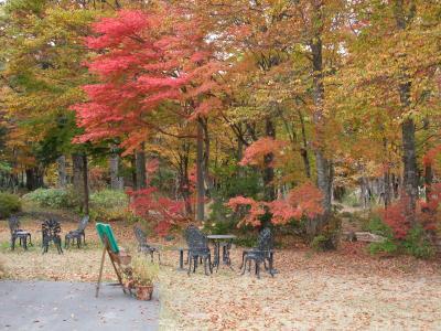 09年10月 ひるがの高原の紅葉
