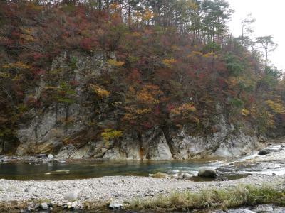 091101 紅葉はじまる塩原温泉☆滝とオシドリを楽しむ