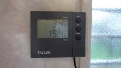 09年11月04日(水)、DS28号で早朝ロードワーク 今冬最寒!【工事中】