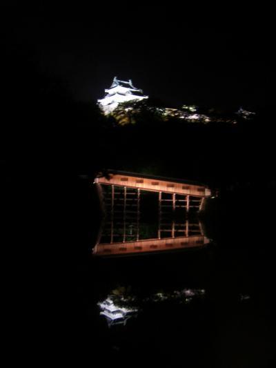 和歌山・竹燈夜