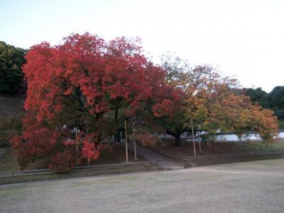 閑谷学校の紅葉