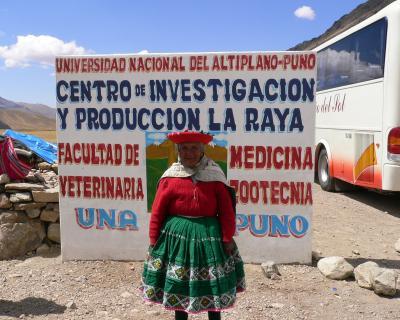 ▼[ペルー] クスコ~プーノ大移動-Cuzco to Puno Bus Trip-