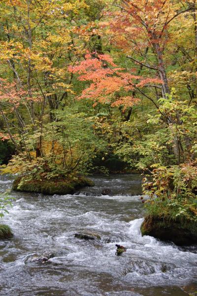 紅葉狩り2400キロのドライブー十和田湖(作成中)