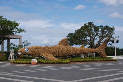 レンタカーで沖縄旅行 美ら海水族館