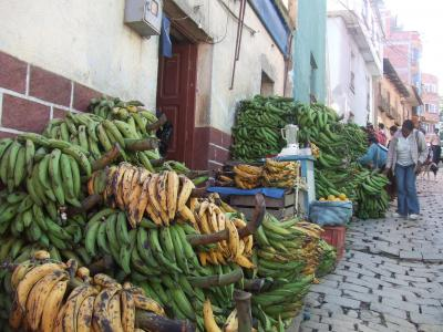 ボリビア国ラパス県の楽園コロイコ町と周辺の景色−南米アンデス山脈 #2