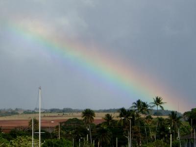 2002年ハワイ、オアフ島1周の旅vol3