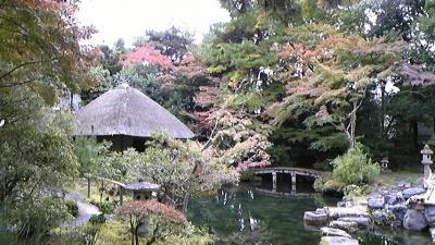 京都散策~紅葉狩り・芸術鑑賞~