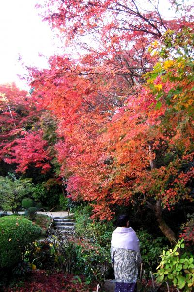 京都の紅葉◆詩仙堂と茶寮宝泉