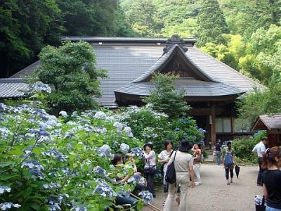 箱根「あじさい寺」