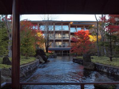 2009年11月 東急ハーヴェストクラブVIALA箱根翡翠の紅葉と花菜の夕食