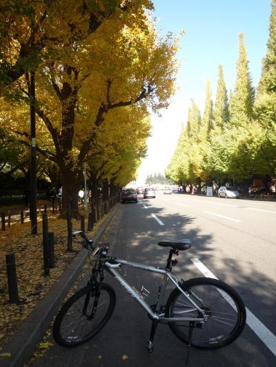 2009年11月 自転車で行ってみようかな 神宮外苑