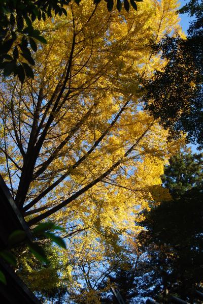 神明社を訪問する