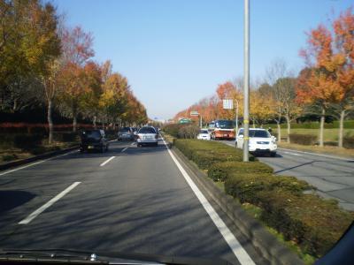 茨城の紅葉の旅