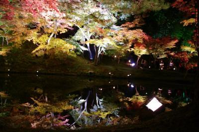 紅葉の京都2009~高台寺の神秘的なライトアップ~