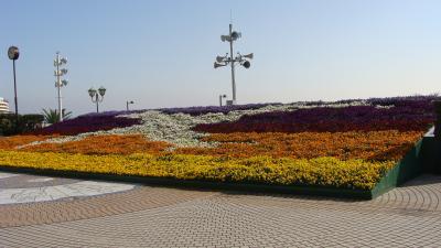 熱海フラワーフォトスポットの見学とゴンちゃんの熱海の海岸散歩