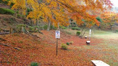 伊東温泉 丸山公園の紅葉