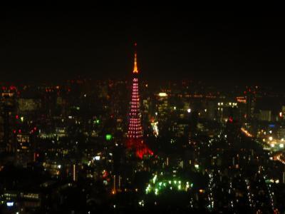 東京シティビュー &スカイデッキ クリスマスモード六本木ヒルズ展望台