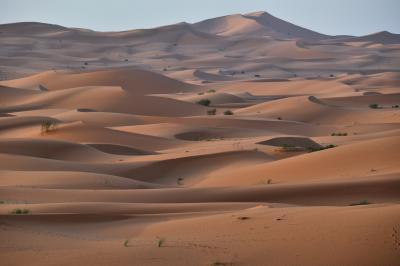 砂漠!さばく!サバク! 6 素晴らしいパノラマ Dune