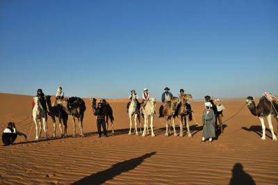 砂漠!さばく!サバク! 7 ティミムーン滞在