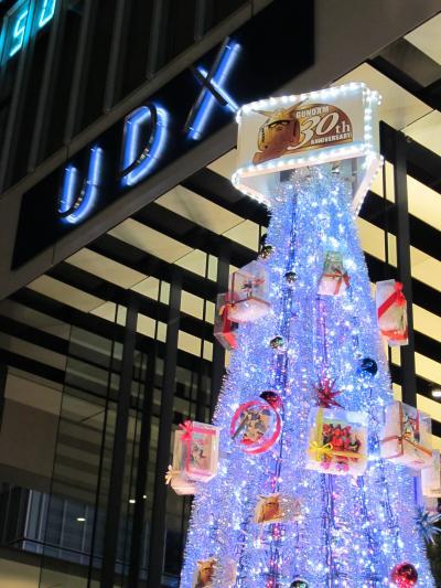 2009冬 秋葉原UDX Winter Illumination2009
