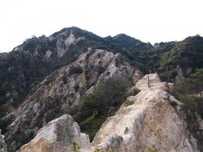 須磨浦山上遊園梅林と須磨アルプス