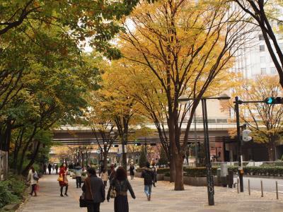 2009晩秋の新宿中央公園