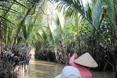2009冬、ベトナム旅行記3(30)12月21日(4)ミト―川クルージング・ビンロウ椰子、地鶏、椰子林