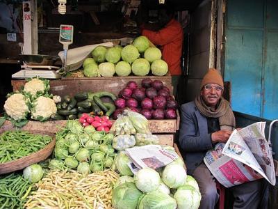 南インド・肌寒いウーティ
