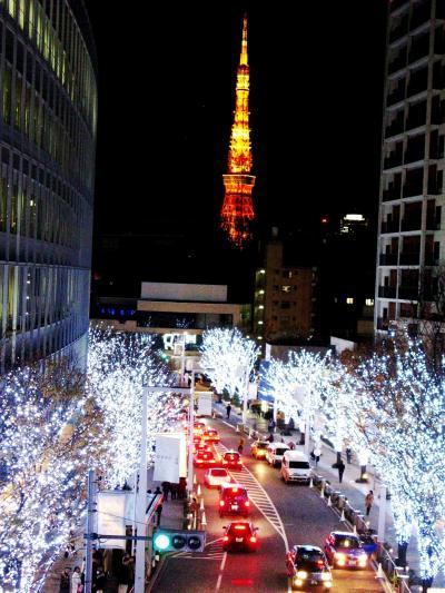 六本木 けやき坂・テレビ朝日・毛利庭園の華 ☆クリスマスの行事で