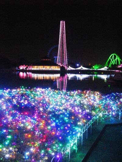 東武動物公園-9 ウインターイルミネーションの粋 ☆桜の春を彩り