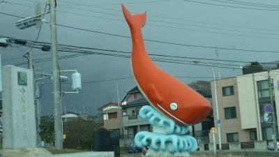 09年大晦日(木)、今年最後の釣行は阿字ヶ浦漁港へ。