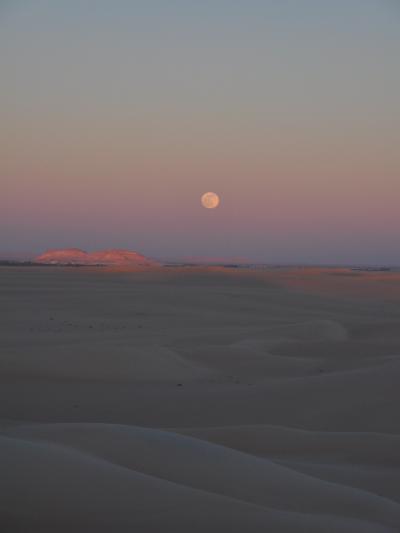 2009年越しエジプト~SIWA砂漠で迎える2010年