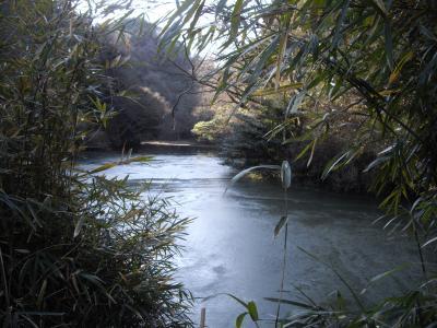 円海山周辺の山歩き(港南台~瀬上池~金沢文庫)