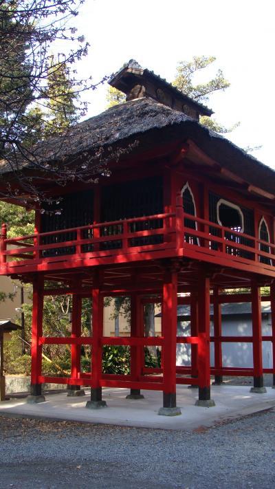 黒門・赤門の清雲寺は土肥桜