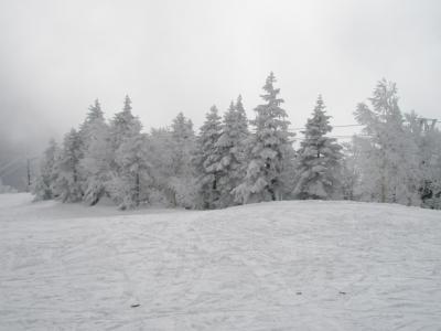 【スノーシューイング】自主トレ失敗の焼額山⇒戸倉国民温泉