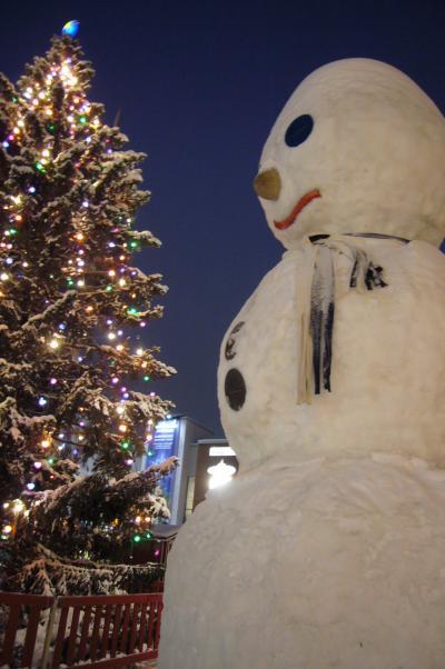 2010年冬のフィンランド②~ロバニエミ・サンタクロースエクスプレス~