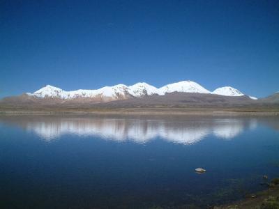 チリ アリカ ラウカ国立公園