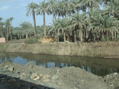 2009年12月エジプト(65) ダハシュールのピラミッド