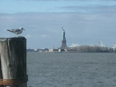 Battery Park に遊ぶ