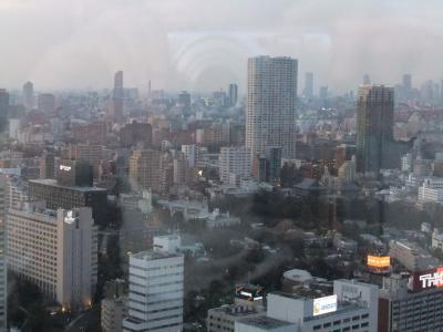 ストリングス東京インターコンチネンタル3_景色&ジム