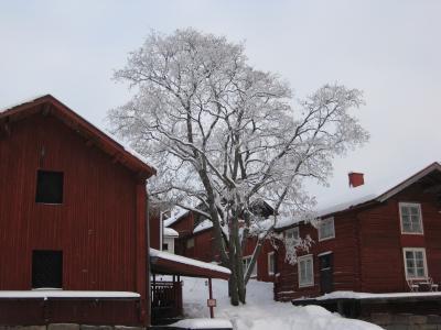 3度目の FINLAND 2010冬 ? ポルヴォーへ