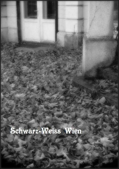 Schwarz-Weiss モノクロームのウィーン Nr.1