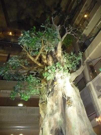 屋久島いわさきホテル滞在記(1泊目)◆世界遺産・屋久島の滝めぐり【その6】