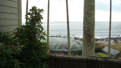 太平洋を下に見て・・・ジャングルの中で湯船の渡り歩き