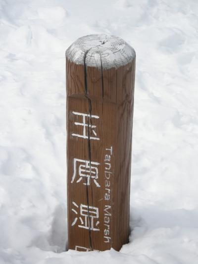 【スノーシューイング】部活・玉原湿原