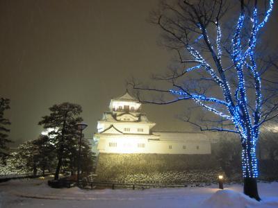 2月 雪の北陸 ~富山~
