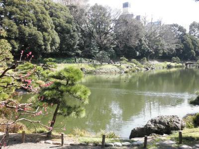 清澄庭園 + 芭蕉