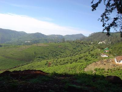 南インド39: スイス?? 「ニルギル高原都市」 ウーティ