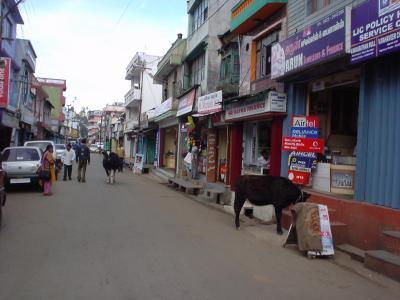 南インド40: ウーティ 「スイス?」